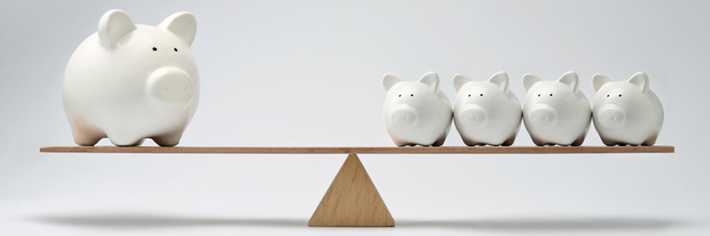 Banner image of pigs balancing on teeter-totter How sturdy is your retirement income?